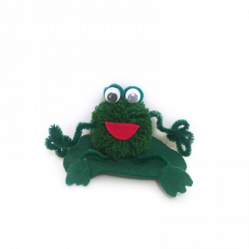 Pom Pom Frog Craft Kit